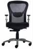 95STR - Multifunction Posture Chair