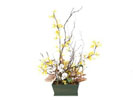 ACC52 - Small Forsythia Arrangement