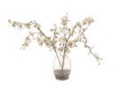 ACC53 - Small White Orchids in Glass Vase