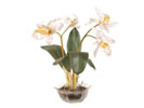 ACC54 - Large White Orchids in Glass Vase